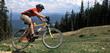 Carvers Renovates Their Bicycle Line for Summer 2015 Bike Rental Season
