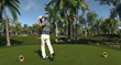 On the Green in The Golf Club Collector's Edition