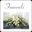 Beinhauer's Increasing Number of Celebrants to Meet Growing Demand for Personalized Funeral Ceremonies