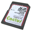Cactus Technologies, Ltd. Launches 808 Series SD Card