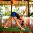 Costa Rica Yoga Retreat with Vajra Sol