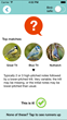 'Shazam for birdsong' app, Chirpomatic, uses the latest machine learning techniques to automatically identify birds