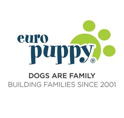 Euro Puppy