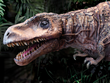 Prince - a baby animatronic T Rex at Field Station: Dinosaurs