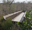 MoistureShield Composite Decking has Maintained its Beauty and Durability Throughout 10 Years of Installation at Big Cypress National Preserve