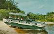 OWD 1960s Tour