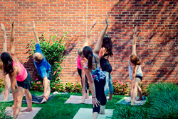 Yoga in the Urban Garden