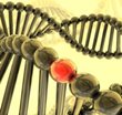 New Analysis Finds Mesothelioma Patients with Genetic Mutation Live...