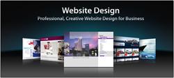 Web SEO Master Professional Web Designer Service