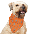Insect Shield for Pets Bandana