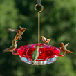 Droll Yankees Offers Helpful Hints for Hummingbird Feeding and Maintaining a Backyard to Maximize Visitors to Nectar Bird Feeders