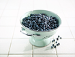 Five Reasons Why Wild Blueberries Buck the Food Blandification Trend