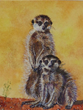 Yound Meercats by Carew