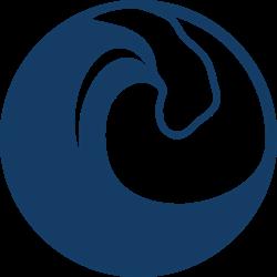Riptide Software UCF Interns