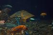OceanWorks International in Attendance at Model Node Display Event at...