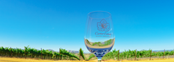 Carter Estate Winery and Resort Wine Glass with Vineyards