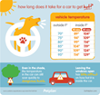 Petplan Campaigns to Prevent Dog Deaths in Hot Cars