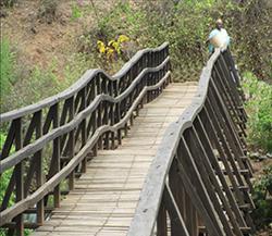bridgepipelunch, bridge pipe lunch, charitable projects in Tanzania, Moshi Tanzania charity, donations for Moshi Tanzania, Menlo Park, Calif., Atherton, Calif