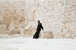 Holy Land Franciscans aid struggling Middle East Christians with new website.
