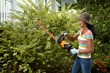 WORX 56V Hedge Trimmer weighs only 10.1 lbs. and cuts branches up to 3/4 inch diameter.