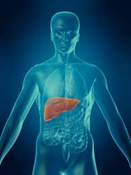 Liver Failure Pipeline Assessment