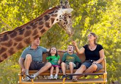 giraffe and guests safari west animal park sunset magazine best family fun travel award