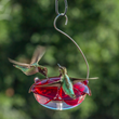 Droll Yankees' Announces Its Newest Line of Hummingbird Feeders, The...