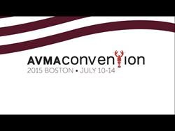 AVMA Boston Logo