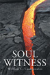 New Novel 'Soul Witness' Depicts Grasp of Terrorism in Society