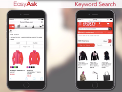 natural language search for mCommerce