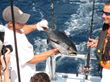 Visit Pensacola's List of Top Saltwater Fishing Tournaments in the...