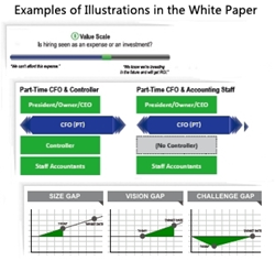 Examples of Illustrations in the White Paper