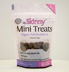 My Skinny Yogurt & Blueberry mini treats