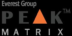 Everest Group PEAK Matrix