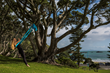 antigravity yoga mount maunganui