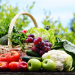 Brookhaven Retreat Recognizes National Fruit and Vegetables Month in June