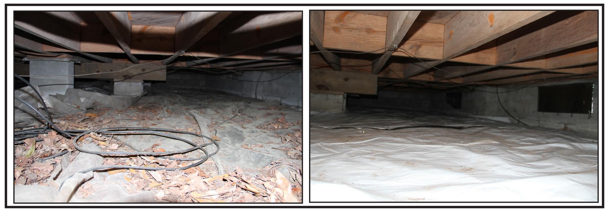 Economic exterminators cleans crawl spaces this summer for Crawl space floor