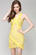 Lace Paneled Cut Out Mini Dress