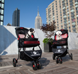 LazyBonezz Announces Release of The Lazy Jogger Pet Stroller - A...