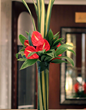 Hotel flowers and flower arrangements for hotels in London UK. floral arrangements for hotels, hotel lobby flower arrangements, artificial flowers for hotels. Todich Floral Design also provides artificial Christmas trees and Christmas decorations for hote