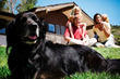 Amica Insurance Has 5 Tips for Pet Preparedness