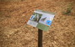 Custom signage along the Play Trail provides educational opportunities for children and families.