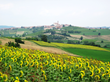 The castles of Monferrato, each guarding a unique medieval village, the famed thermal waters of Acqui, and the hypnotic geometry of the Nizza hills are among the many highlights on our glorious route.