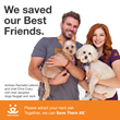 'Under the Dome' Star Rachelle Lefevre And Top Hollywood Chef Chris Crary Team Up With Best Friends To Save Shelter Pets