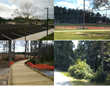 Renovations at Briscoe Park by Sports Turf