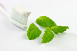 White Clay Toothpaste combined with Mint, Green Tea Extract, & Grapefruit Seed Extract