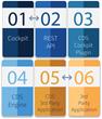 Cognition Corporation Introduces REST API and Cockpit Data Synchronization (CDS) Utility for Cockpit V7.4