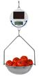 DETECTO's New Solar-Powered Hanging Scale