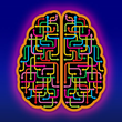 New Online Continuing Education (CE) Course from HealthForumOnline on Brain-Based Psychotherapy: Clinical Biopsychology