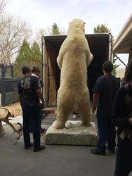 Boone and Crockett Club polar bear